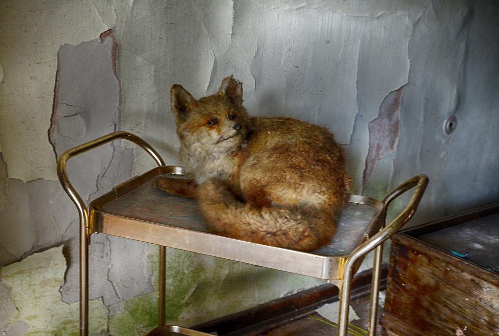 lost-place-anna-L-DrPain-svenspannagel-fotografie-urbex-urologen-villa-lostplace-rotten-place-53.jpg